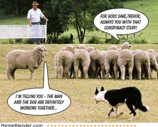 A Sheep's Defense
